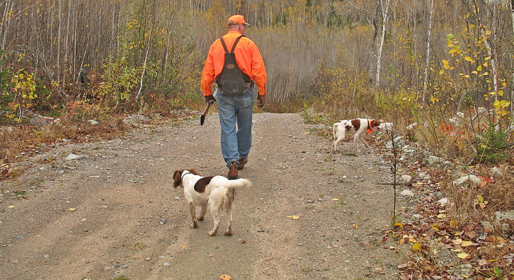 top hunting stories - get grouse - hunter with dog on path