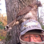 Alexander Innes of Embro had a grouse visitor while deer hunting.