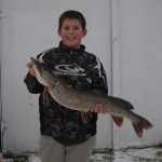 While ice fishing on Lake Simcoe on Jan. 17, 2014, Matt Quick, 12, got this Northern pike, 9.5-pounds, 35-inches in length and 14-inches in girth. He used a micro tube while fishing for perch.