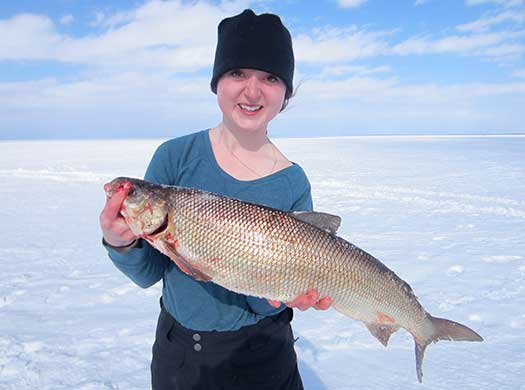 Emma, a Fleming collage student, spent most of her reading week fishing lake Simcoe with her uncle Paul and her father Tom. Emma landed this whitefish, a personal best.