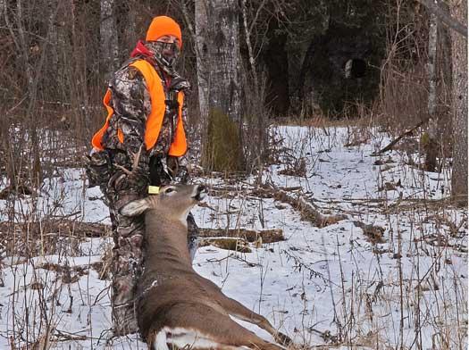 mandatory harvest reporting - man dragging a deer from bush