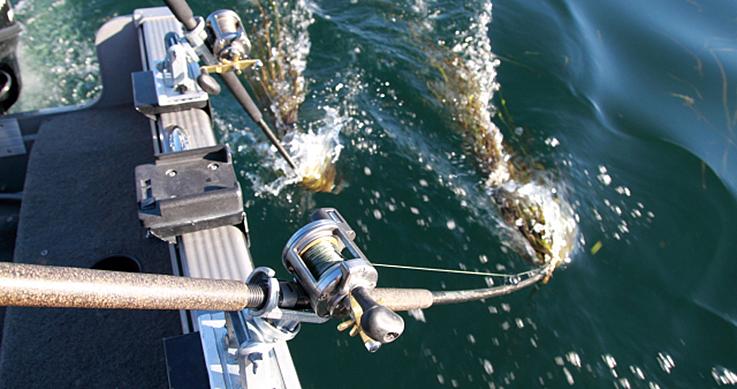 rod holder on a boat