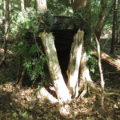 DIY ground blind