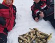 On Family Day, Jonathan & Evan caught their limit of perch on Lake St. Clair.