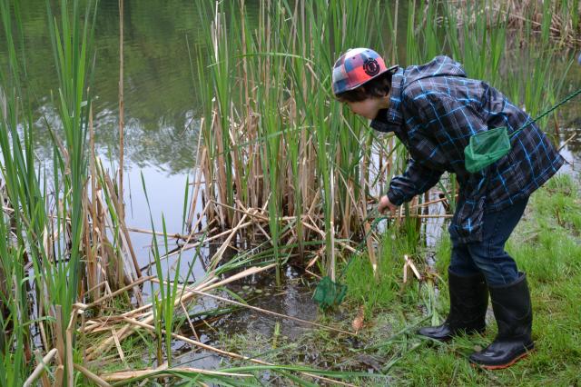 Royal Ashburn - Boy by pond
