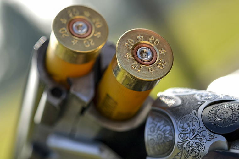 A close-up of a gun barrel with two bullet cartridges
