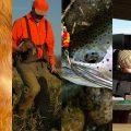 Hunt fish trap shoot