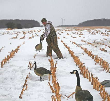 waterfowlers with goose decoys