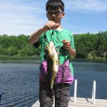 Noah Kim of Kingston celebrated his eight birthday by landing and releasing this nice largemouth and outfishing his grandpa (again) on Sharbot Lake.