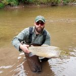 Justin Todd of Burford caught this brown trout while fishing a Lake Ontario tributary.