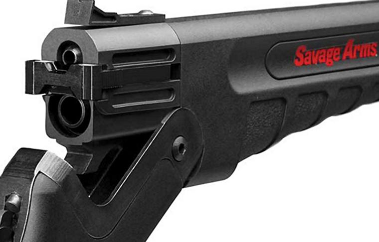 Savage Arms firearm