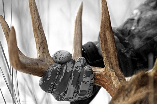 hunter's hand holding downed buck by antlers