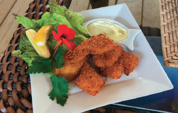 fish fingers arranged decorously on a plate