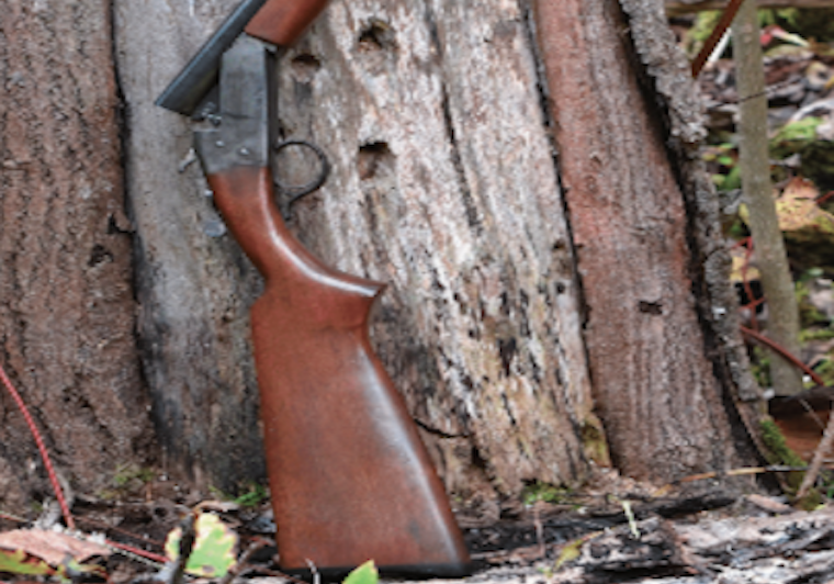 A model 84 Cooey against a tree
