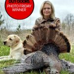 Photo Friday winner Jess Sinclair of Napanee was able to tag this gorgeous jake on Fox's Farm last weekend, and enjoyed a fresh turkey dinner.