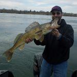 While wearing his lucky cap, Ray Bougie of Ingleside caught and released this 31.5-inch walleye on the St. Lawrence River using a green jig with a minnow.