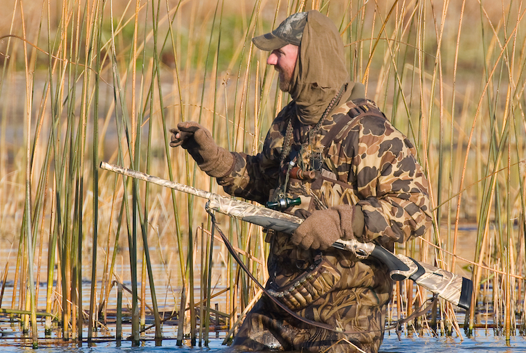 more waterfowl changes