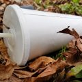 a fallen, forgotten take-out cup embedded in leaves