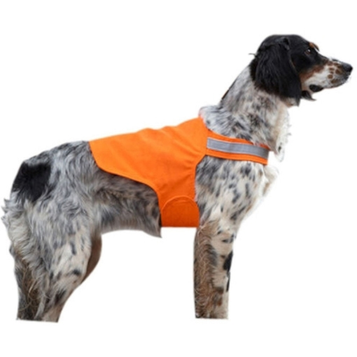 A pup wearing a dog hunter orange cape