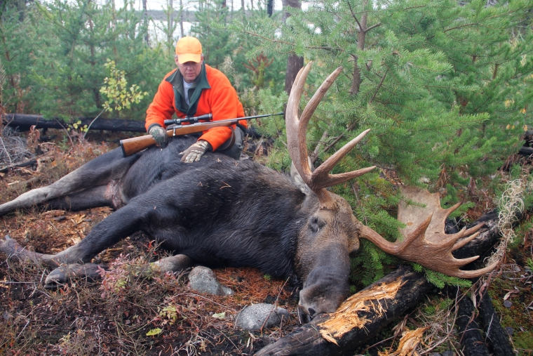 a hunter with a felled moose
