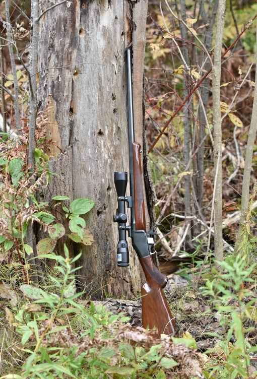 Browning 78 / Winchester 1885