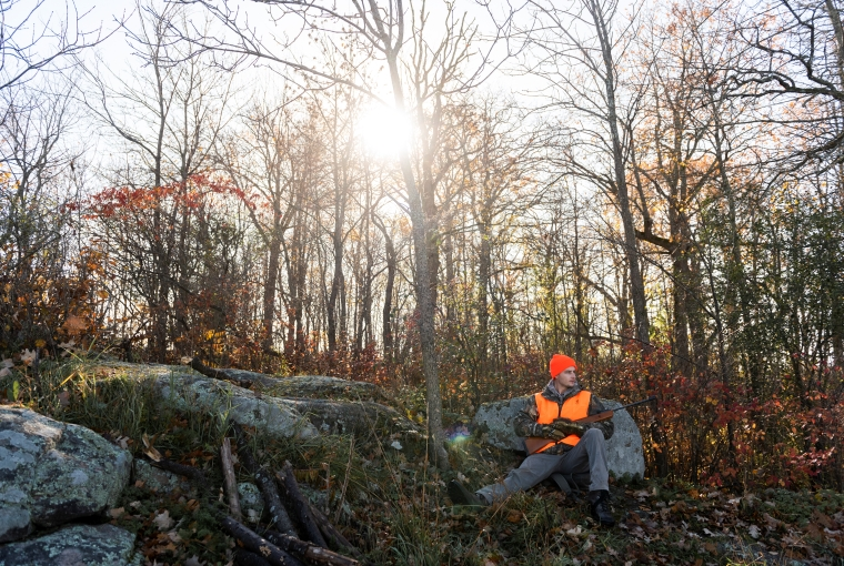 a hunter sets up against a mossy stone as the sun streams down
