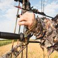 Pulling strings in a field