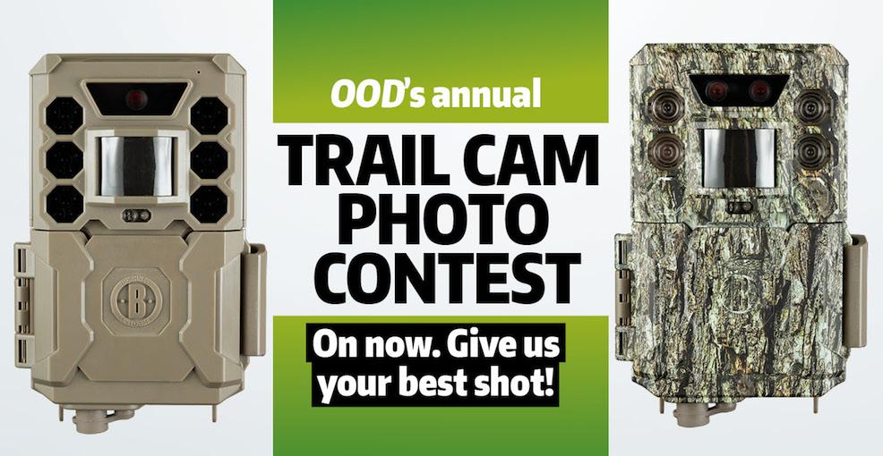 2020 Trail Cam Photo Contest