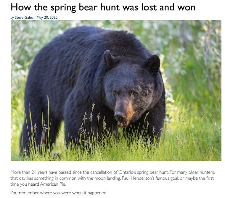 Spring Bear Hunt story