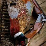Mike Smith of Petrolia made memories of his own, harvesting his first pheasant using his grandad's old Browning.