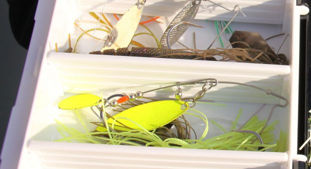 Bass fishing spinners and topwater baits- fast action