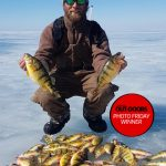 Photo Friday winner Chris Shepley of Sombra spoon fed jumbo perch on Lake St. Clair with McGathys Hooks.