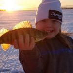 Stacey McBride submitted this photo of Berkley Damphouse grasping a perch he caught from Mitchell's Bay on Lake St. Clair.