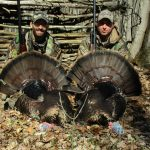 Zach Wall of Kincardine and his father, Todd Wall, doubled-down on two toms during their spring turkey hunt.