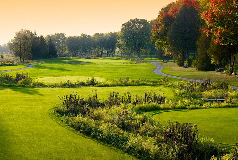 Royal Ashburn golf course wetlands