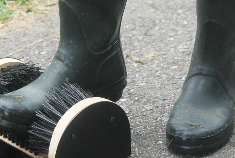 Rubber boots cleaning dirt and debris using a boot brush cleaning station.