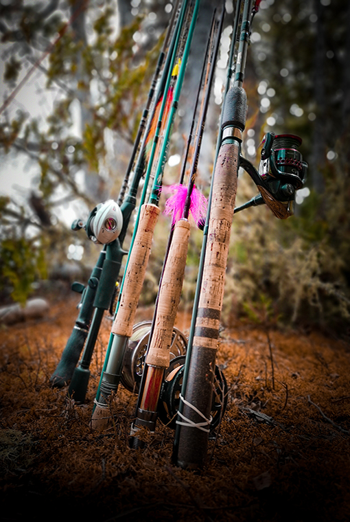 Various fishing rod combos, bait caster, fly rods, spinning rods and reel combos side by side.