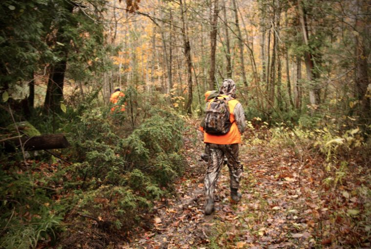 Hunter wearing camouflage outfit and backpack as well as blaze orange vest walks through heavily wooded area with other hunters.