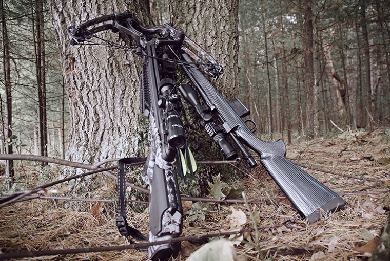 Black Crossbow and black .22 rifle lay up against a tree in a heavily wooded area.