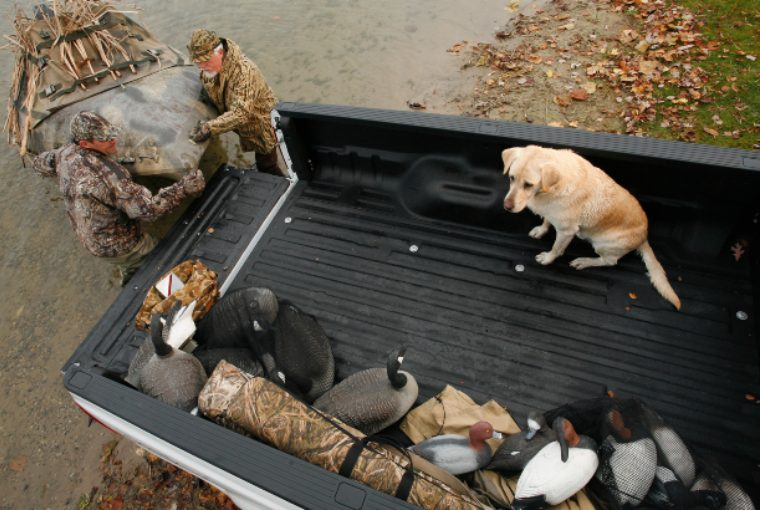 Hunters dressed in camouflage load up the bed of a truck with hunting gear as a yellow labrador retriever sits in the back as well.