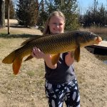 Jeff Roehrich of Harrow submitted this photo of his 10-year-old daughter Annabelle who caught this huge carp in Essex County this spring. She baited the hook, cast the line, and reeled the fish in all by herself.