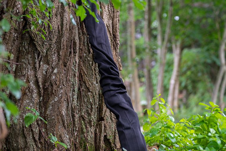 firearm encased in a gun sock, leaning against a tree